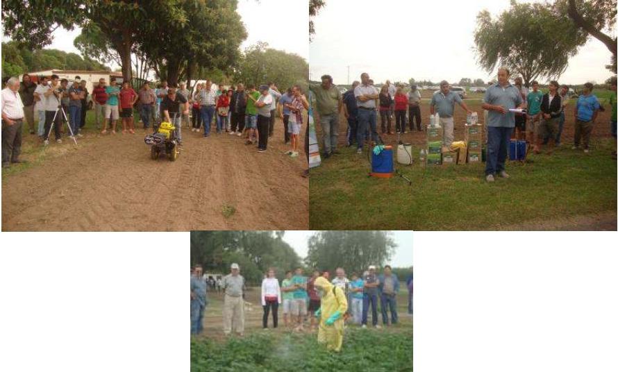 Productores probando nuevas prácticas agrícolas